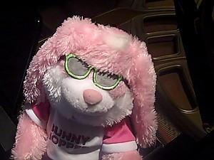 Hip Hop Musical Animated Pink or Blue Bunny  #P-HOP