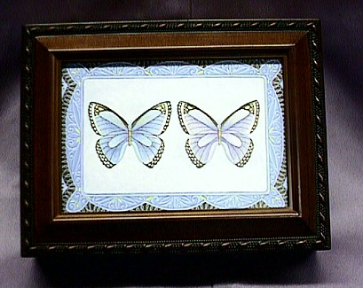 Butterfly Musical Picture Frame Box #PB2044