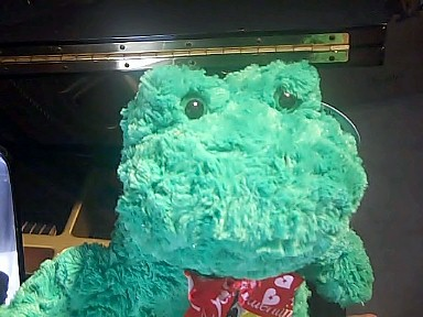 Animated Singing Frog Musical Gift #singfrog
